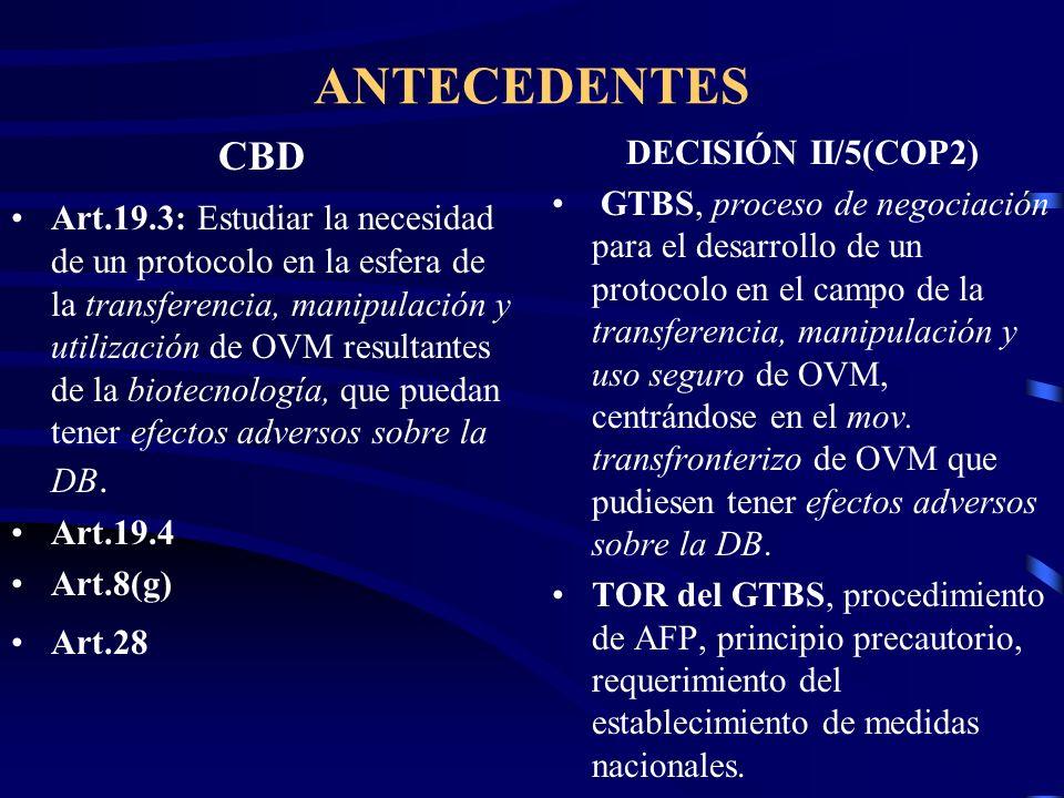 ANTECEDENTES CBD Art.19.3: Estudiar la necesidad de un protocolo en la esfera de la transferencia, manipulación y utilización de OVM resultantes de la