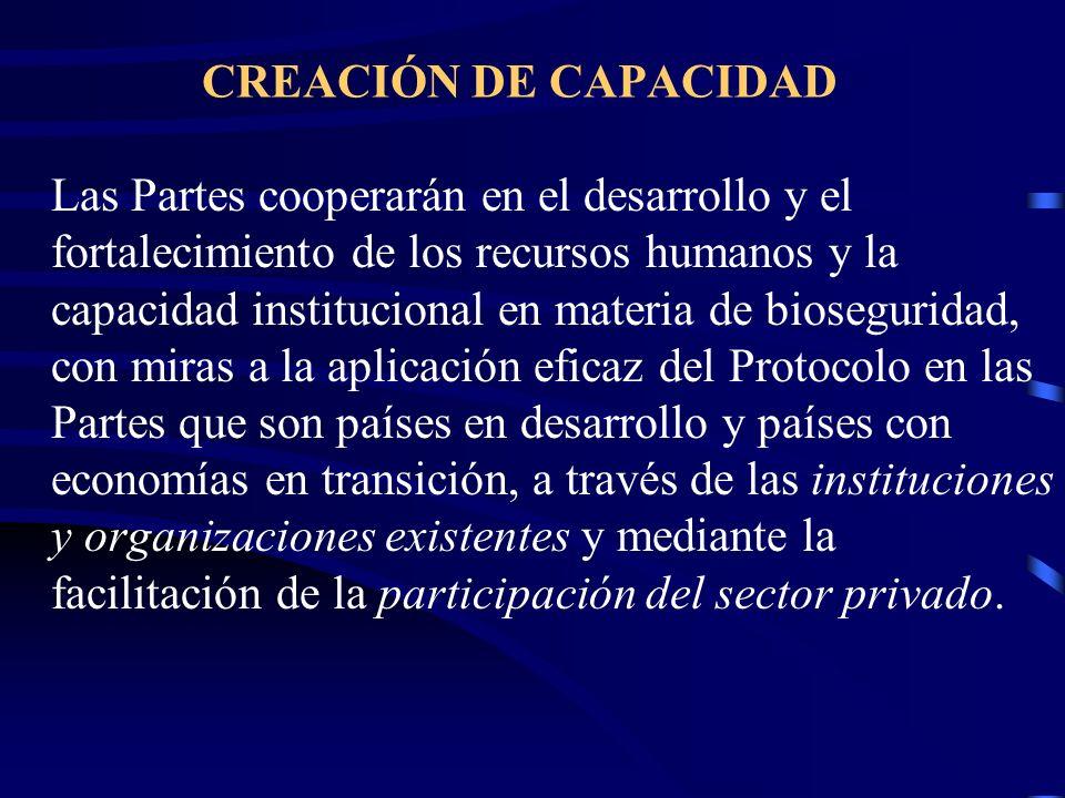 CREACIÓN DE CAPACIDAD Las Partes cooperarán en el desarrollo y el fortalecimiento de los recursos humanos y la capacidad institucional en materia de b