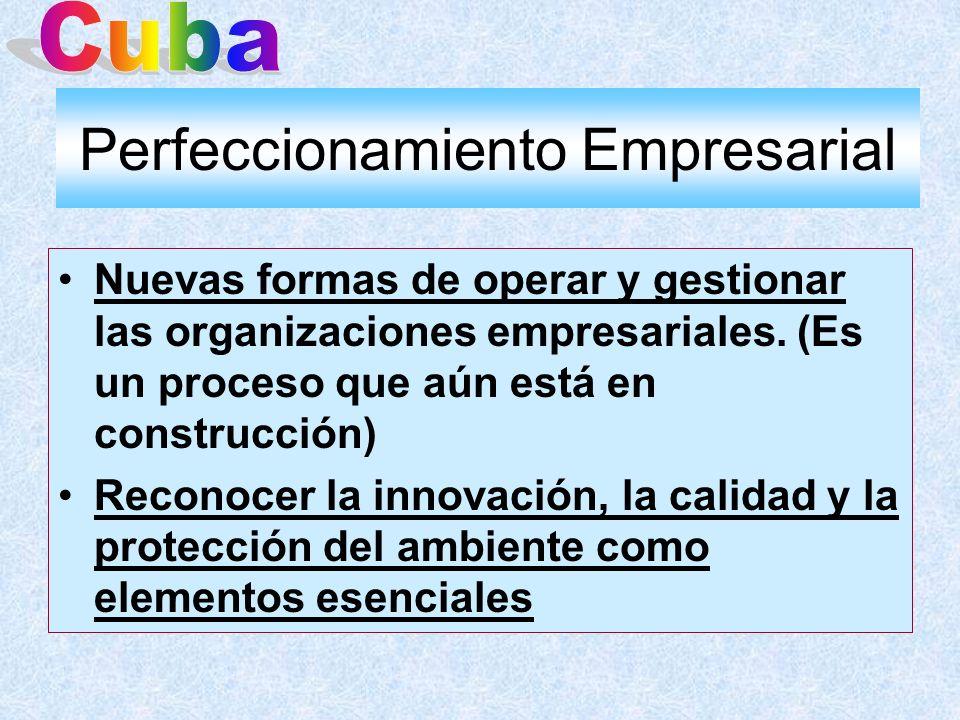 Perfeccionamiento Empresarial Nuevas formas de operar y gestionar las organizaciones empresariales. (Es un proceso que aún está en construcción) Recon