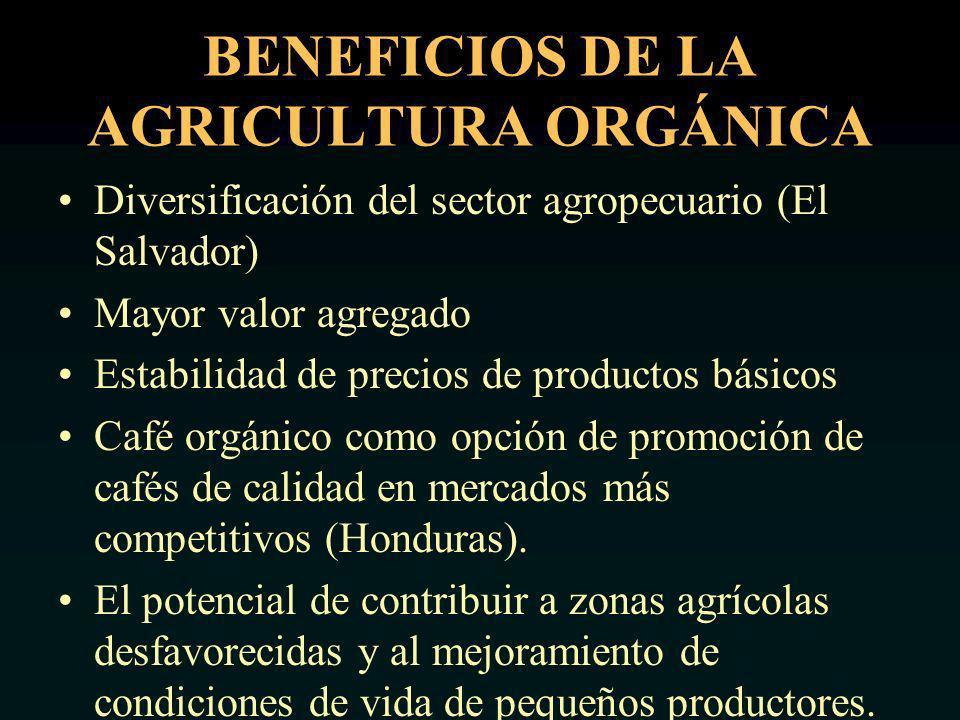 BENEFICIOS DE LA AGRICULTURA ORGÁNICA Diversificación del sector agropecuario (El Salvador) Mayor valor agregado Estabilidad de precios de productos básicos Café orgánico como opción de promoción de cafés de calidad en mercados más competitivos (Honduras).