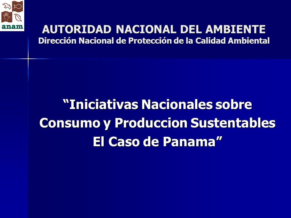 Autoridad Nacional del Ambiente Dirección Nacional de Protección de la Calidad Ambiental www.anam.gob.pa