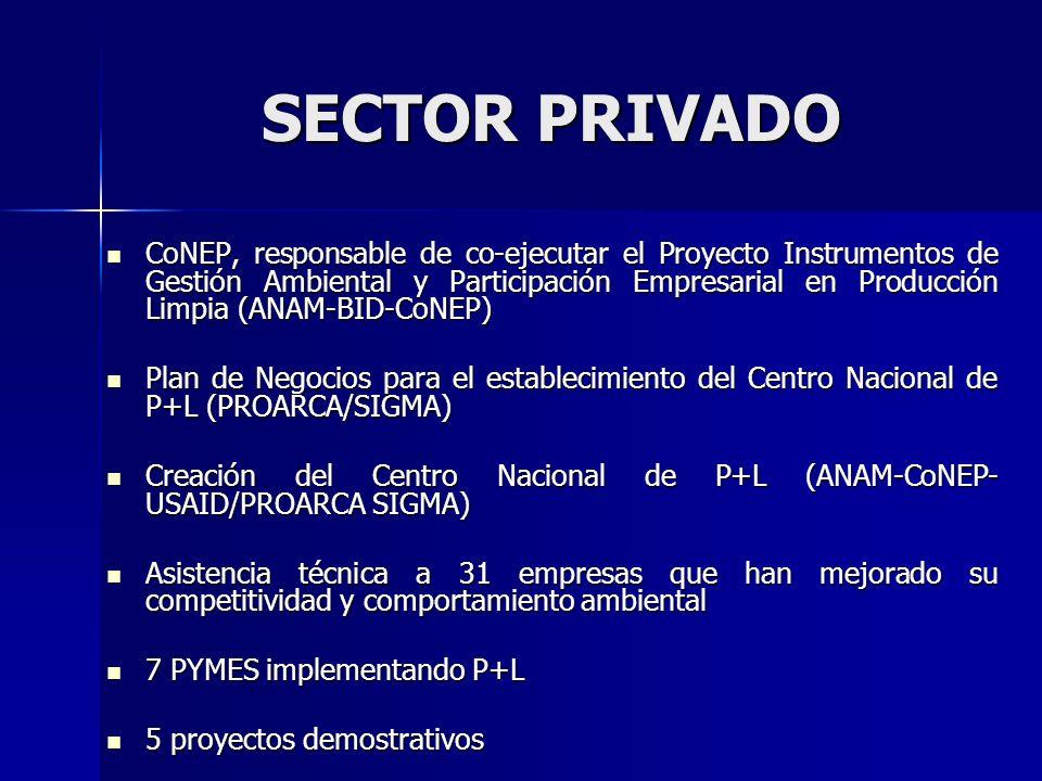 Capacitación a 912 de diversos sectores Capacitación a 912 de diversos sectores Creación de la Red Centroamericana de empresas en P+L, Capítulo de Panamá Creación de la Red Centroamericana de empresas en P+L, Capítulo de Panamá Firma de la Declaración Internacional de P+L por 20 empresas, además el CoNEP y la Red de Empresas en P+L Firma de la Declaración Internacional de P+L por 20 empresas, además el CoNEP y la Red de Empresas en P+L Empresas ganadoras en el Concurso Nacional de Premios Ambientales en P+L Empresas ganadoras en el Concurso Nacional de Premios Ambientales en P+L Empresas ganadoras de la Primera y Segunda versión del Premio a la Innovación Ambiental en Centroamérica Empresas ganadoras de la Primera y Segunda versión del Premio a la Innovación Ambiental en Centroamérica