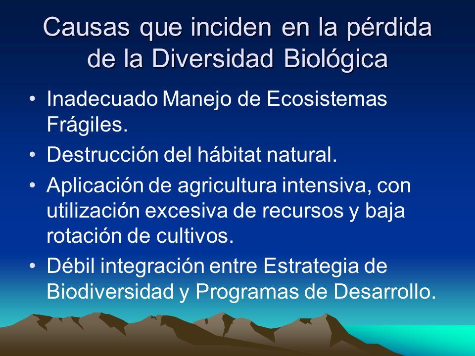 Causas que inciden en la pérdida de la Diversidad Biológica Inadecuado Manejo de Ecosistemas Frágiles. Destrucción del hábitat natural. Aplicación de