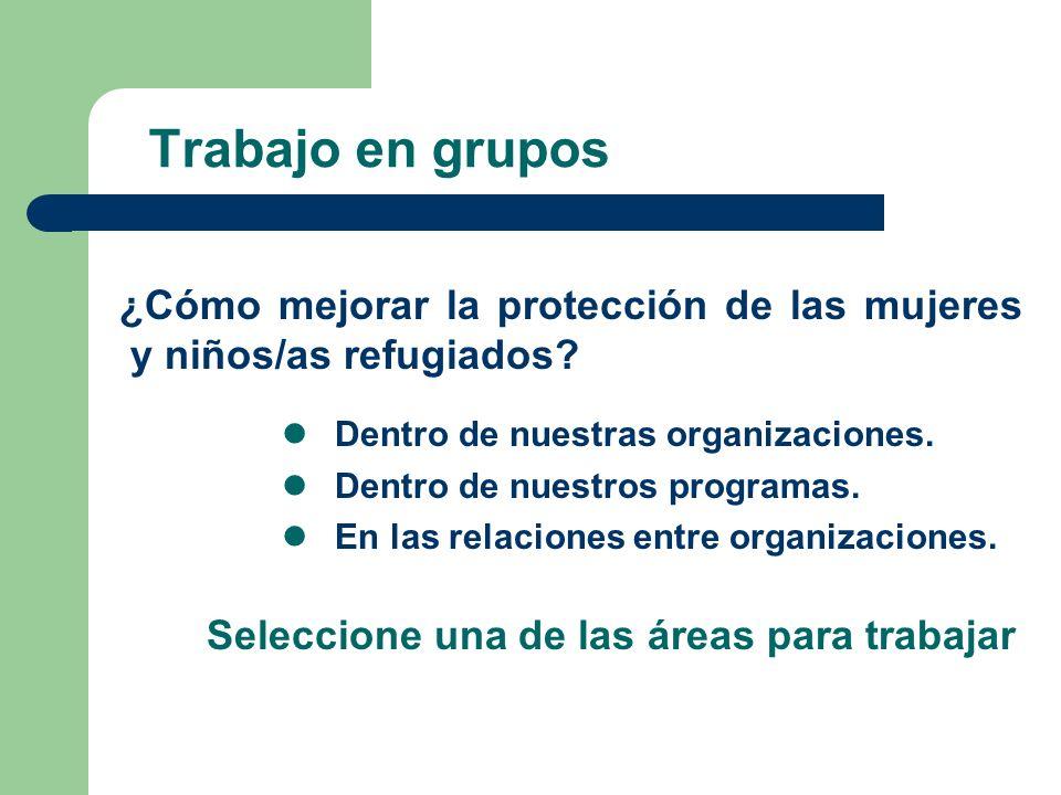 Trabajo en grupos ¿Cómo mejorar la protección de las mujeres y niños/as refugiados? Dentro de nuestras organizaciones. Dentro de nuestros programas. E