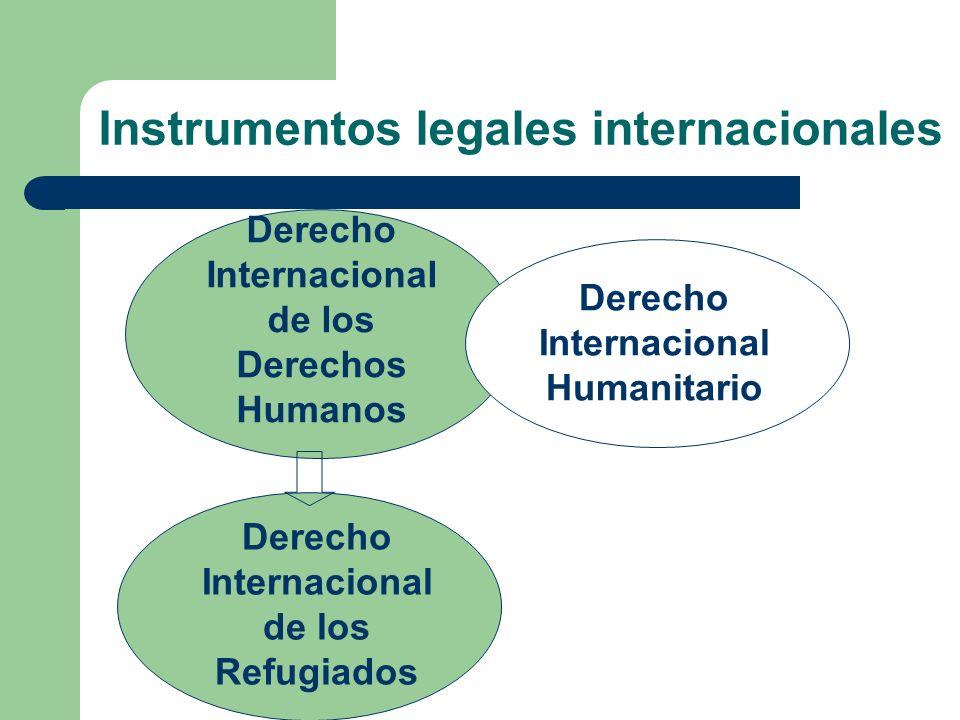 Instrumentos legales internacionales Derecho Internacional de los Derechos Humanos Derecho Internacional de los Refugiados Derecho Internacional Human