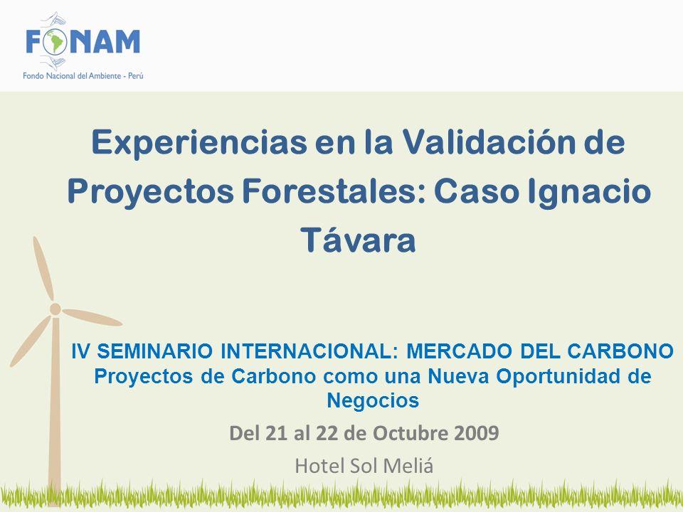 IV SEMINARIO INTERNACIONAL: MERCADO DEL CARBONO Proyectos de Carbono como una Nueva Oportunidad de Negocios Del 21 al 22 de Octubre 2009 Hotel Sol Mel
