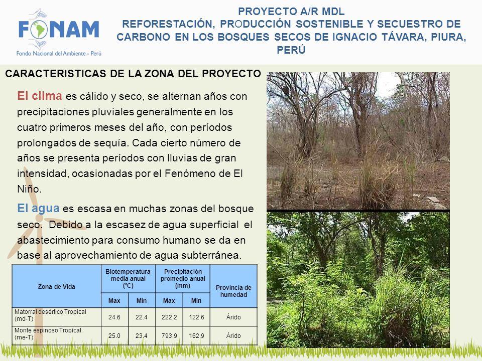 PROYECTO A/R MDL REFORESTACIÓN, PRODUCCIÓN SOSTENIBLE Y SECUESTRO DE CARBONO EN LOS BOSQUES SECOS DE IGNACIO TÁVARA, PIURA, PERÚ Objetivo del Proyecto: Contribuir a mitigar los efectos del cambio climático y mejorar el nivel de vida de las familias campesinas del bosque seco, mediante la reforestación y el aprovechamiento de los recursos maderables y diferentes de la madera.