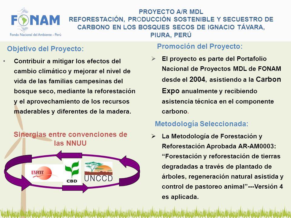 PROYECTO A/R MDL REFORESTACIÓN, PRODUCCIÓN SOSTENIBLE Y SECUESTRO DE CARBONO EN LOS BOSQUES SECOS DE IGNACIO TÁVARA, PIURA, PERÚ Participantes del Proyecto: El 11 de Junio del 2007 se firmó un convenio tripartito a 40 años entre FONAM, AIDER y la Comunidad Campesina José Ignacio Távara Pasapera, para el desarrollo e implementación exitosa del proyecto con responsabilidades asignadas a cada parte y la respectiva instalación de una Junta de Administración del Proyecto.