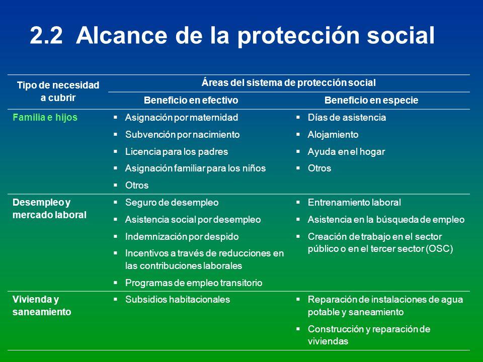 Tipo de necesidad a cubrir Áreas del sistema de protección social Beneficio en efectivoBeneficio en especie Familia e hijos Asignación por maternidad