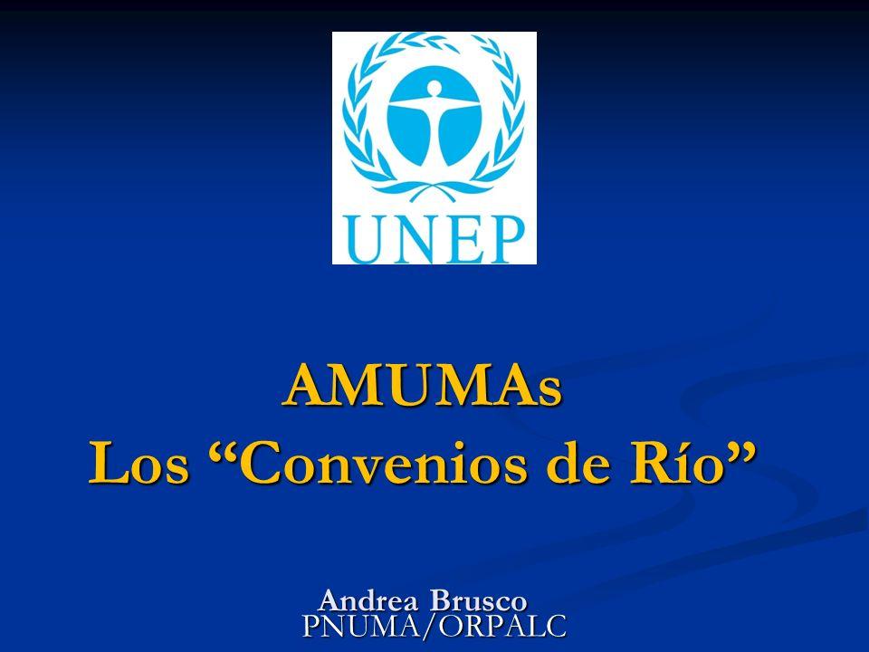 AMUMAs Los Convenios de Río Andrea Brusco PNUMA/ORPALC