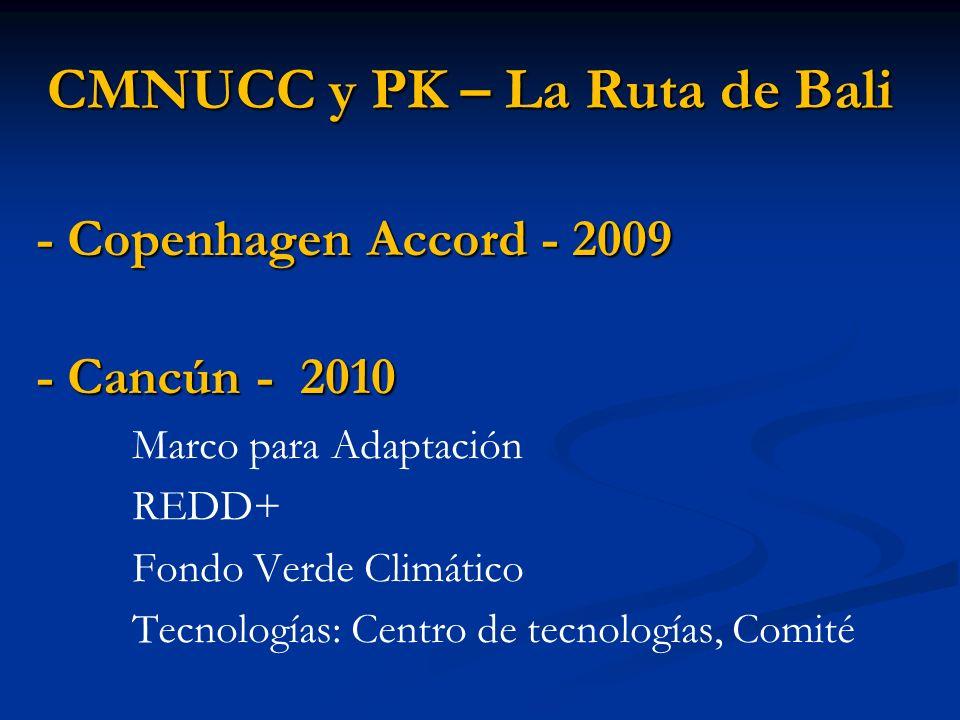 CMNUCC y PK – La Ruta de Bali - Copenhagen Accord - 2009 - Cancún - 2010 Marco para Adaptación REDD+ Fondo Verde Climático Tecnologías: Centro de tecn