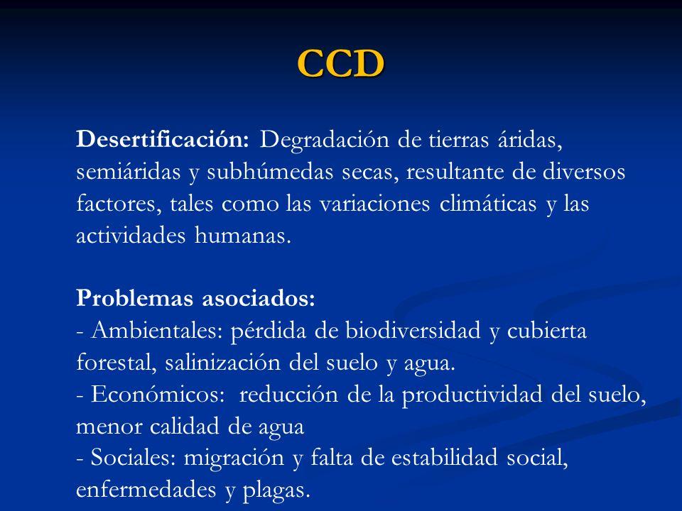 CCD Desertificación: Degradación de tierras áridas, semiáridas y subhúmedas secas, resultante de diversos factores, tales como las variaciones climáti