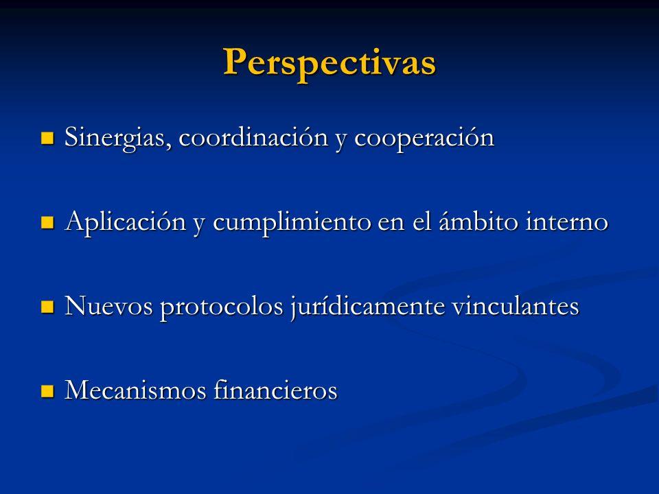 Perspectivas Sinergias, coordinación y cooperación Sinergias, coordinación y cooperación Aplicación y cumplimiento en el ámbito interno Aplicación y c