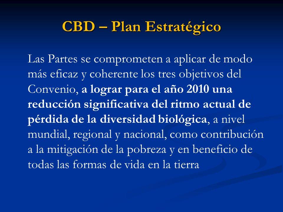 CBD – Plan Estratégico Las Partes se comprometen a aplicar de modo más eficaz y coherente los tres objetivos del Convenio, a lograr para el año 2010 u