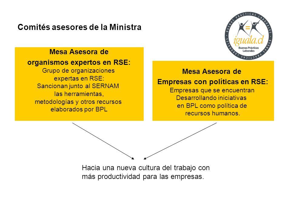 Comités asesores de la Ministra Mesa Asesora de Empresas con políticas en RSE: Empresas que se encuentran Desarrollando iniciativas en BPL como políti