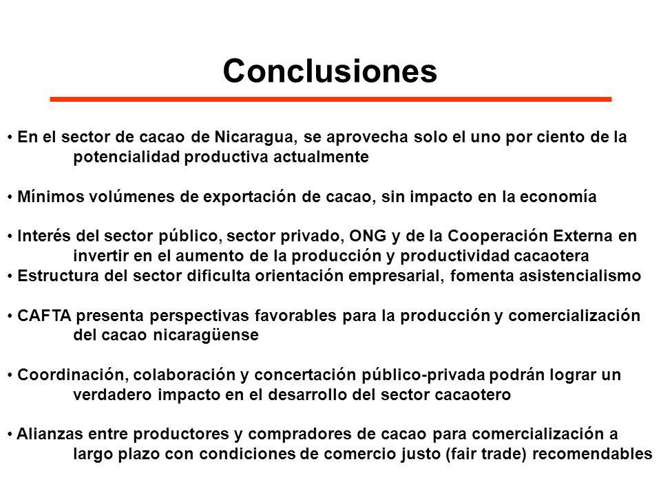 Conclusiones En el sector de cacao de Nicaragua, se aprovecha solo el uno por ciento de la potencialidad productiva actualmente Mínimos volúmenes de e