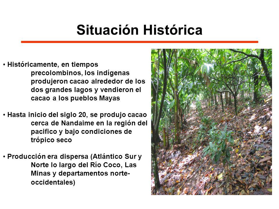 Situación Histórica Históricamente, en tiempos precolombinos, los indígenas produjeron cacao alrededor de los dos grandes lagos y vendieron el cacao a