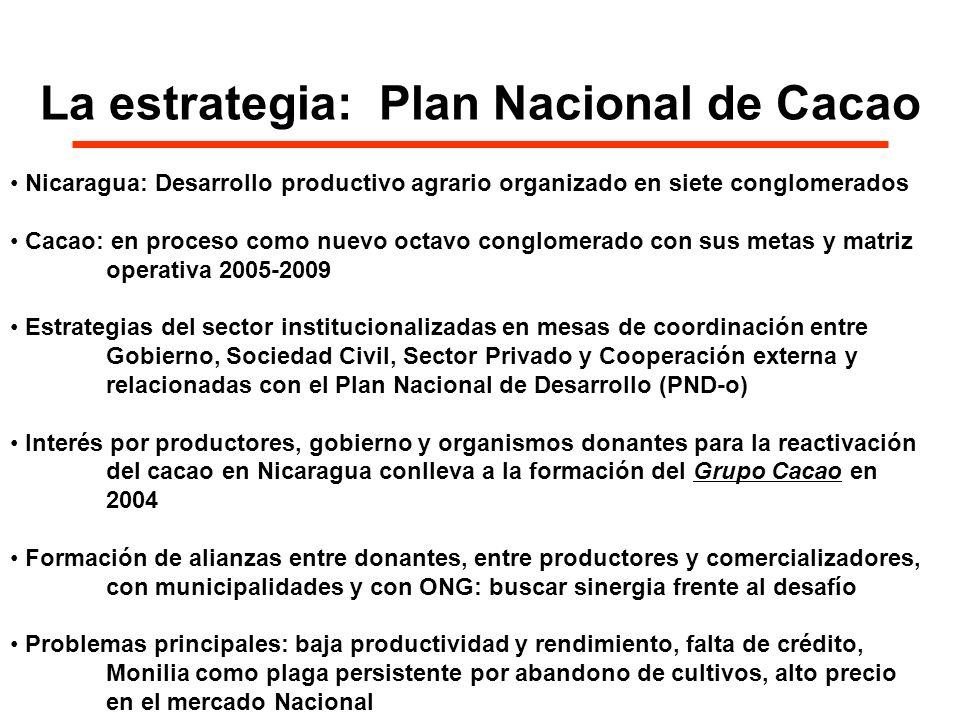 La estrategia: Plan Nacional de Cacao Nicaragua: Desarrollo productivo agrario organizado en siete conglomerados Cacao: en proceso como nuevo octavo c