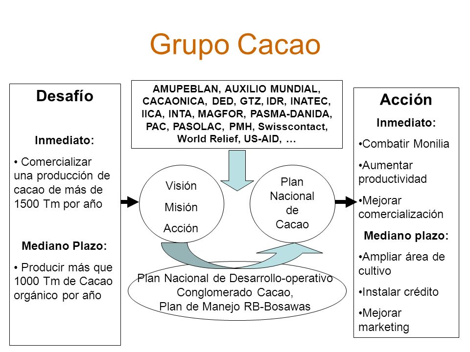 Grupo Cacao AMUPEBLAN, AUXILIO MUNDIAL, CACAONICA, DED, GTZ, IDR, INATEC, IICA, INTA, MAGFOR, PASMA-DANIDA, PAC, PASOLAC, PMH, Swisscontact, World Rel