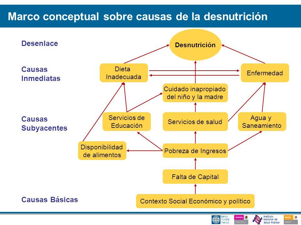 Instituto Nacional de Salud Pública Banco Mundial México Desenlace Causas Inmediatas Causas Básicas Causas Subyacentes Marco conceptual sobre causas d