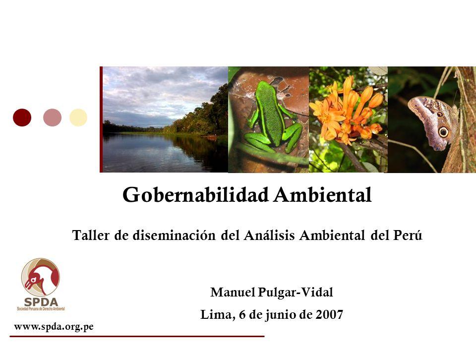 www.spda.org.pe Gobernabilidad Ambiental Taller de diseminación del Análisis Ambiental del Perú Manuel Pulgar-Vidal Lima, 6 de junio de 2007