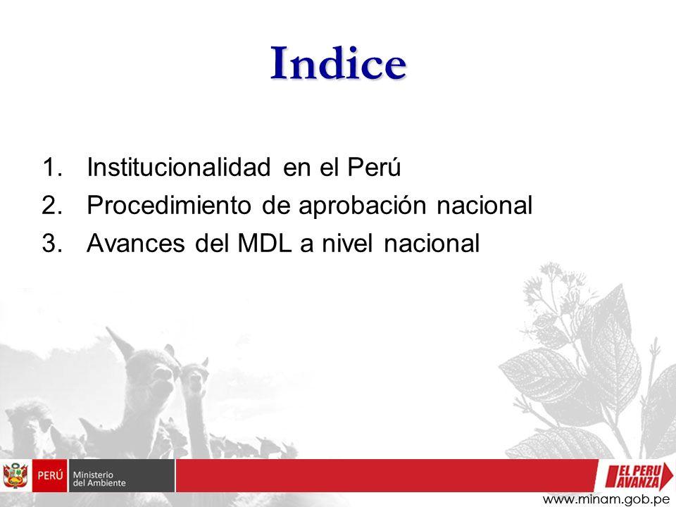 Institucionalidad del MDL en el Perú Los temas relacionados al cambio climático y en particular al MDL son manejados por dos instituciones: El Ministerio del Ambiente - MINAM El Fondo Nacional del Ambiente - FONAM