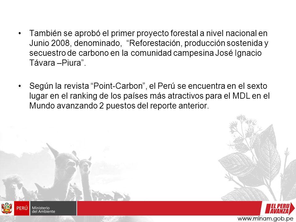 También se aprobó el primer proyecto forestal a nivel nacional en Junio 2008, denominado, Reforestación, producción sostenida y secuestro de carbono e
