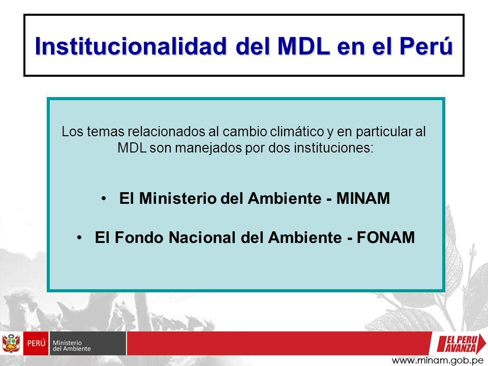 Institucionalidad del MDL en el Perú Los temas relacionados al cambio climático y en particular al MDL son manejados por dos instituciones: El Ministe