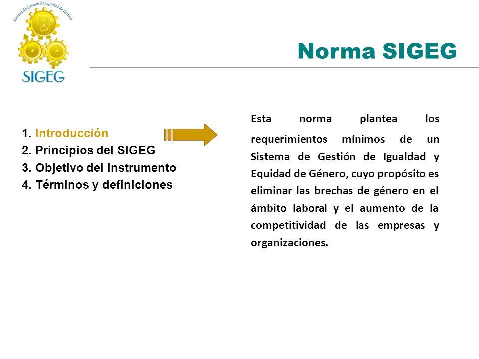 Norma SIGEG 1. Introducción 2. Principios del SIGEG 3. Objetivo del instrumento 4. Términos y definiciones Esta norma plantea los requerimientos mínim