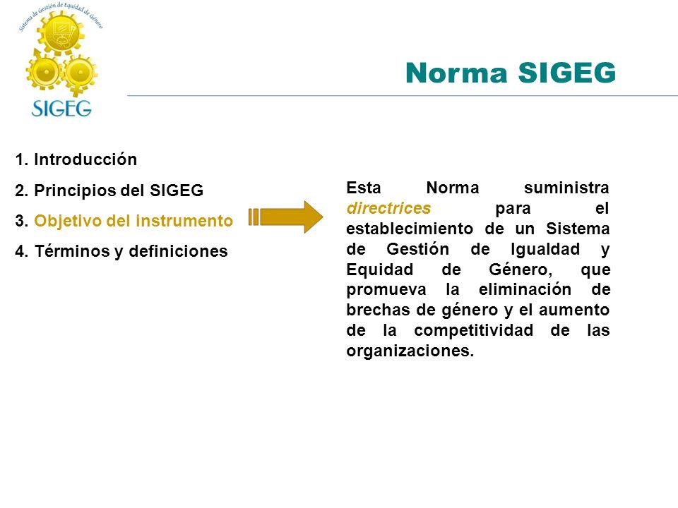 1. Introducción 2. Principios del SIGEG 3. Objetivo del instrumento 4. Términos y definiciones Norma SIGEG Esta Norma suministra directrices para el e