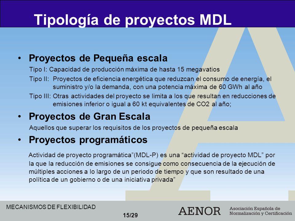 MECANISMOS DE FLEXIBILIDAD 15/29 Proyectos de Pequeña escala Tipo I: Capacidad de producción máxima de hasta 15 megavatios Tipo II: Proyectos de efici