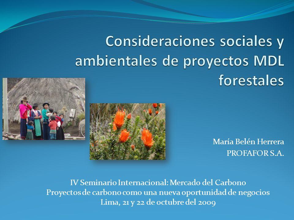 María Belén Herrera PROFAFOR S.A. IV Seminario Internacional: Mercado del Carbono Proyectos de carbono como una nueva oportunidad de negocios Lima, 21