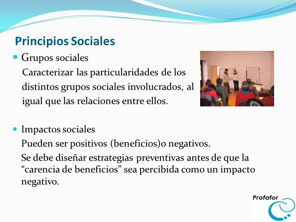 Principios Sociales G rupos sociales Caracterizar las particularidades de los distintos grupos sociales involucrados, al igual que las relaciones entr