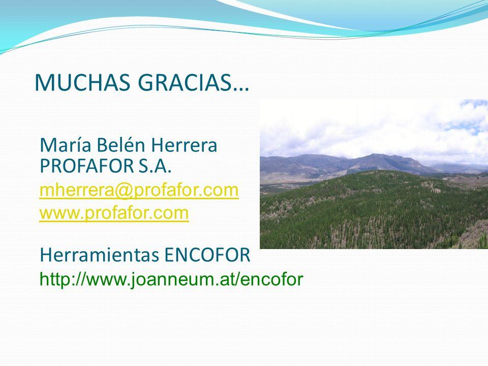 MUCHAS GRACIAS… María Belén Herrera PROFAFOR S.A. mherrera@profafor.com www.profafor.com Herramientas ENCOFOR http://www.joanneum.at/encofor