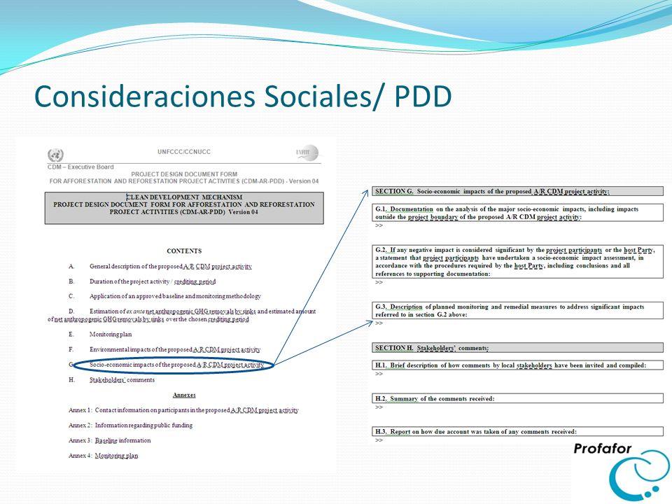 Consideraciones Ambientales / PDD