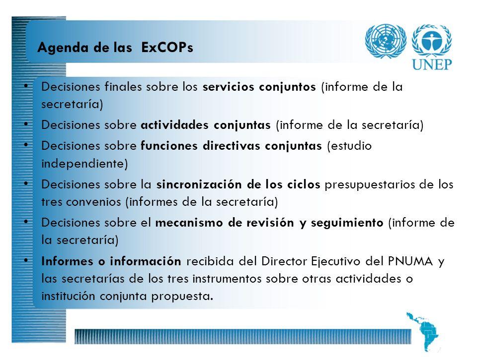 12 Agenda de las ExCOPs Decisiones finales sobre los servicios conjuntos (informe de la secretaría) Decisiones sobre actividades conjuntas (informe de