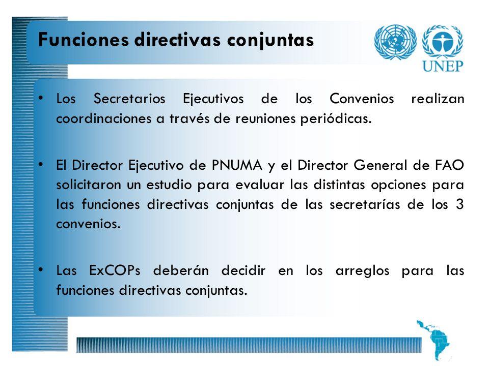 17 Funciones directivas conjuntas Los Secretarios Ejecutivos de los Convenios realizan coordinaciones a través de reuniones periódicas. El Director Ej