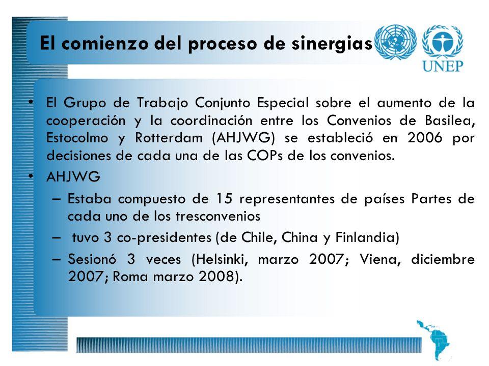 5 El comienzo del proceso de sinergias El Grupo de Trabajo Conjunto Especial sobre el aumento de la cooperación y la coordinación entre los Convenios