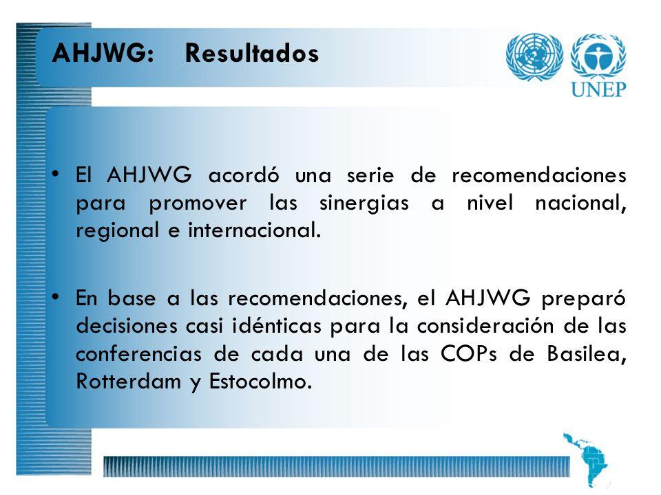 6 AHJWG: Resultados El AHJWG acordó una serie de recomendaciones para promover las sinergias a nivel nacional, regional e internacional. En base a las