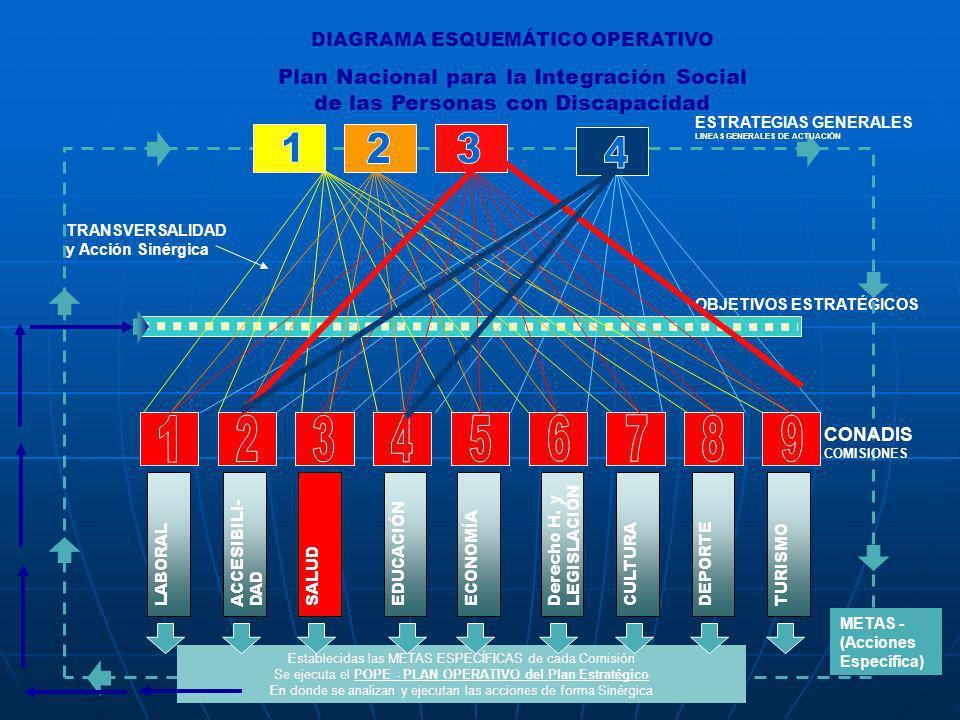OBJETIVOS ESTRATÉGICOS Establecidas las METAS ESPECÍFICAS de cada Comisión Se ejecuta el POPE - PLAN OPERATIVO del Plan Estratégico En donde se analiz