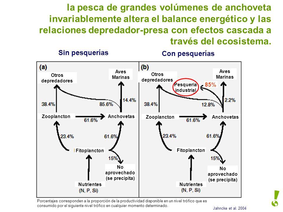 la pesca de grandes volúmenes de anchoveta invariablemente altera el balance energético y las relaciones depredador-presa con efectos cascada a través