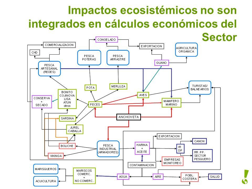 Impactos ecosistémicos no son integrados en cálculos económicos del Sector