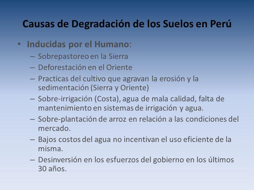 Causas de Degradación de los Suelos en Perú Inducidas por el Humano: – Sobrepastoreo en la Sierra – Deforestación en el Oriente – Practicas del cultivo que agravan la erosión y la sedimentación (Sierra y Oriente) – Sobre-irrigación (Costa), agua de mala calidad, falta de mantenimiento en sistemas de irrigación y agua.