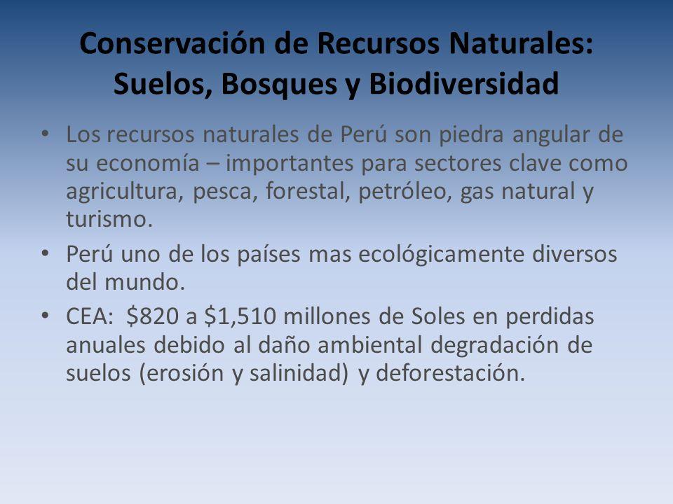 Conservación de Recursos Naturales: Suelos, Bosques y Biodiversidad Los recursos naturales de Perú son piedra angular de su economía – importantes para sectores clave como agricultura, pesca, forestal, petróleo, gas natural y turismo.
