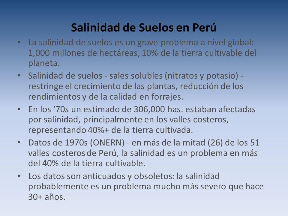 Salinidad de Suelos en Perú La salinidad de suelos es un grave problema a nivel global: 1,000 millones de hectáreas, 10% de la tierra cultivable del planeta.