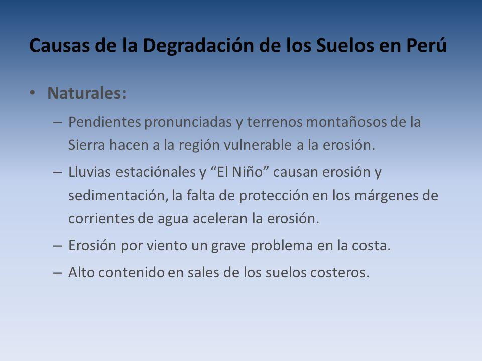 Causas de la Degradación de los Suelos en Perú Naturales: – Pendientes pronunciadas y terrenos montañosos de la Sierra hacen a la región vulnerable a la erosión.