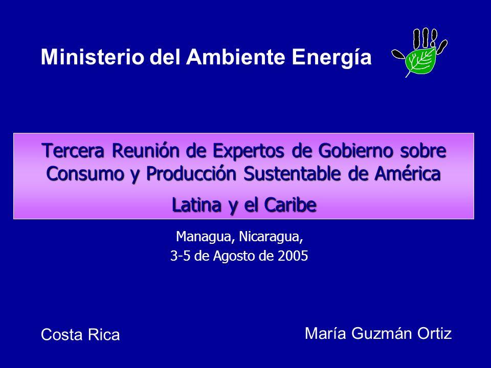 Tercera Reunión de Expertos de Gobierno sobre Consumo y Producción Sustentable de América Latina y el Caribe Managua, Nicaragua, 3-5 de Agosto de 2005 María Guzmán Ortiz Ministerio del Ambiente Energía Costa Rica