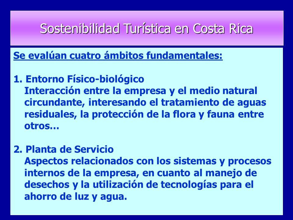 Se evalúan cuatro ámbitos fundamentales: 1.