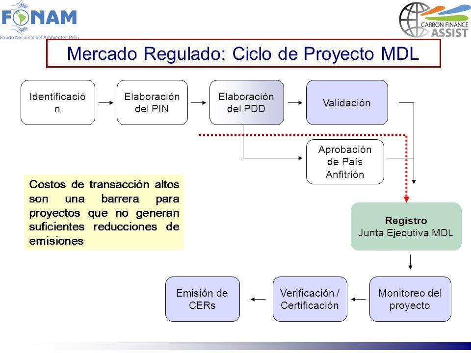Registro Junta Ejecutiva MDL Emisión de CERs Verificación / Certificación Monitoreo del proyecto Identificació n Elaboración del PIN Elaboración del P