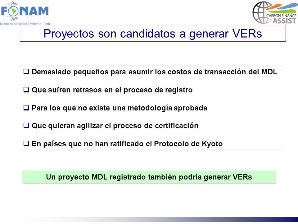 Proyectos son candidatos a generar VERs Demasiado pequeños para asumir los costos de transacción del MDL Que sufren retrasos en el proceso de registro